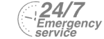 24/7 Emergency Service Pest Control in Esher, Claygate, KT10. Call Now! 020 8166 9746